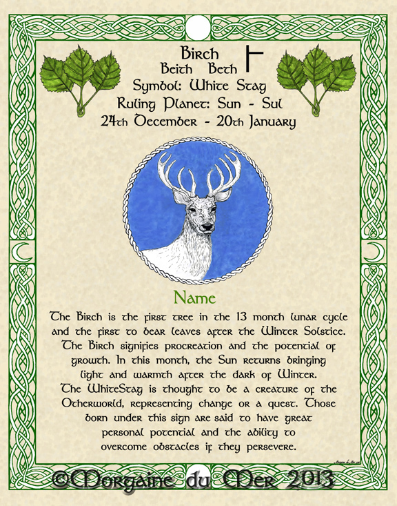 a15deaf3bad Druid Tree Lore Astrology Celtic Lunar Zodiac Sign Art Prints and ...