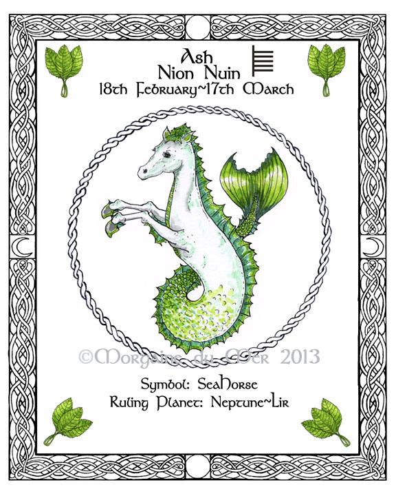 Druid Tree Lore Astrology Celtic Lunar Zodiac Sign Art Prints By Morgaine Du Mer